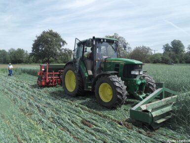 Entwicklung von Instrumenten für die Verbesserung der Wettbewerbsfähigkeit von ökologisch erzeugtem Obst und Gemüse aus dem Oberrheingebiet