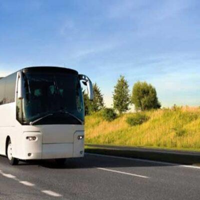 THNS COLMAR-BREISACH : Hochwertige Busverbindung Colmar – Breisach