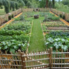 Solidarische Gärten des Dreilands: Auf eine gesunde Ernährungskultur!