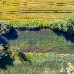 Die Sauer - zwei Länder, ein Fluss. Ein Fluss verbindet Mensch und Natur : Grenzüberschreitender Gewässer-Informationspfad